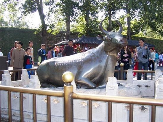 世界最大的镀金古铜牛