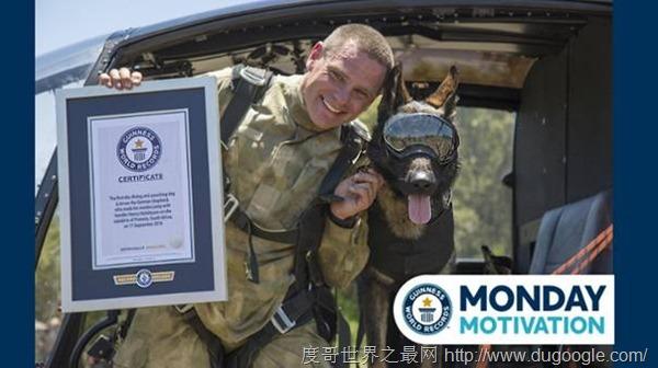 跳伞拯救野生动物的反盗猎犬Arrow