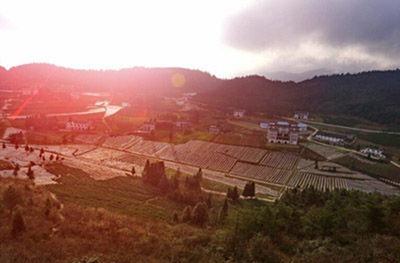 西乌旗打人事件图片_中国最美的乡村,2015年CCTV评选中国最美的十大乡村名单 — 度哥 ...