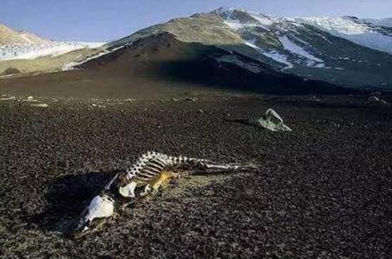 昆仑山死亡谷的真相,气候诡异7月下起暴风雪
