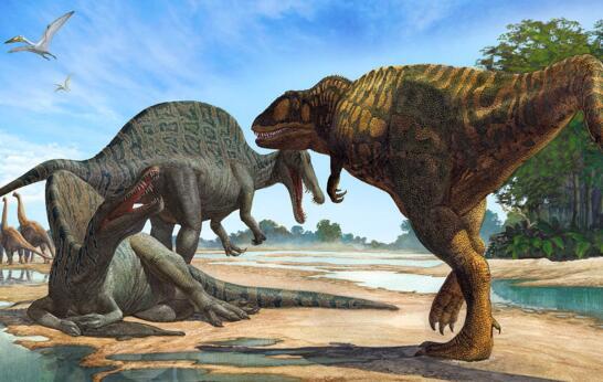 史前最大的食肉恐龙,鲨齿龙vs霸王龙(牙齿最适合放血)