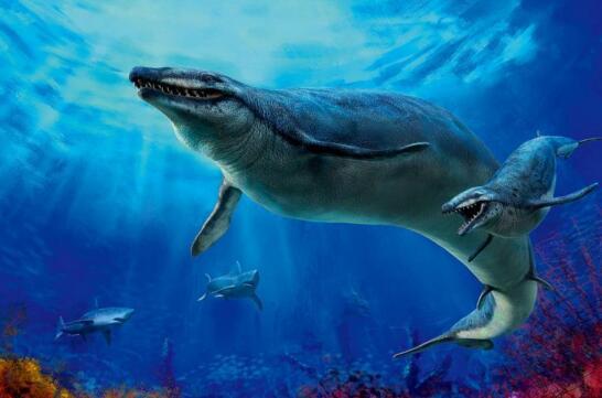 史前海洋霸主伊西斯龙王鲸,全球最大的掠食动物