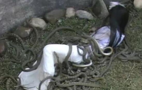 残忍的虿盆之刑,将活人丢入毒蛇坑慢慢吞噬至死