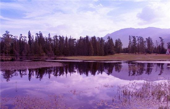 新疆旅游攻略 新疆十大最受欢迎旅游景点